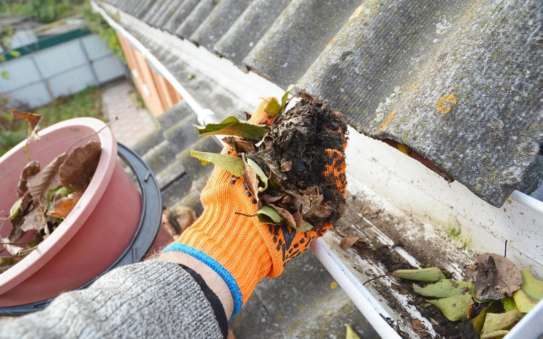 gutter cleaning is one of the necessary home maintenance tasks