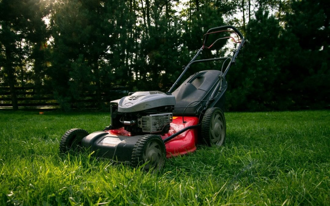 spring lawn care means lawn mower maintenance