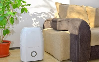 The Benefits and Types of Home Air Purifiers